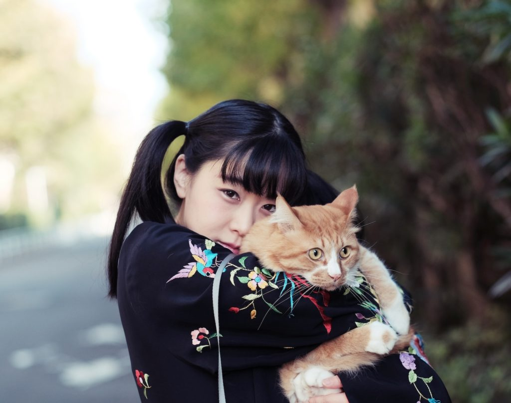 テンテンコ、neco眠るとのネコ愛溢れる新曲MVをフルCGアニメ公開
