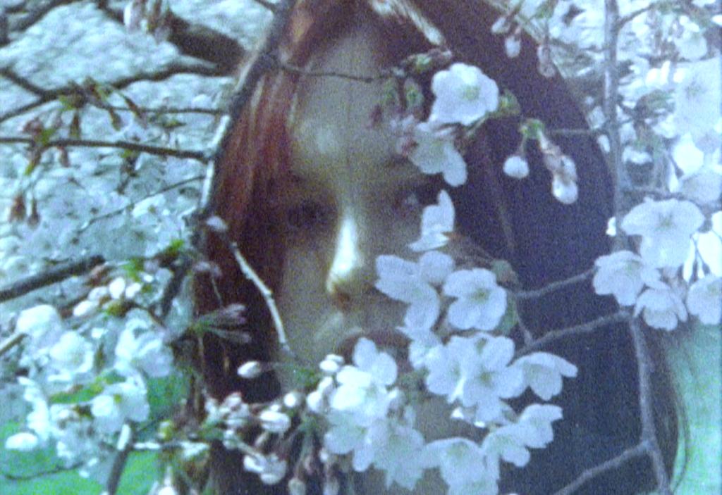 For Tracy Hyde、ロマンティックに洗練された「櫻の園」MV公開