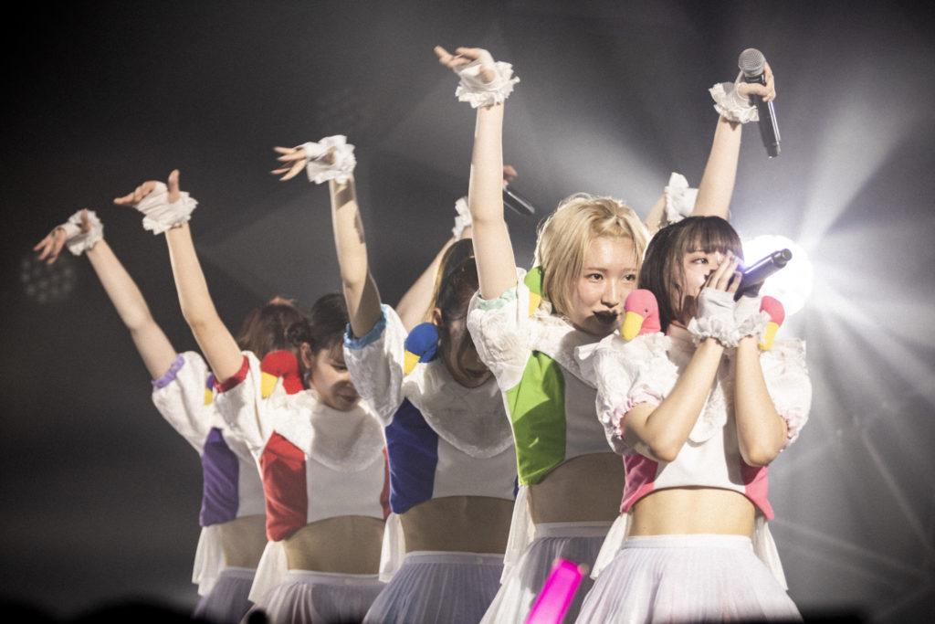【LIVE REPORT】豆柴の大群、2度目のツアーで魅せた成長の跡「ここにいる全員と一緒に東京ドームにいきたい」